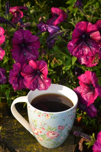 Coffee in garden